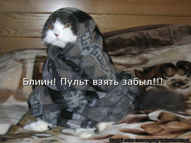 http://kotomatrix.ru/images/lolz/2011/07/10/948184.jpg
