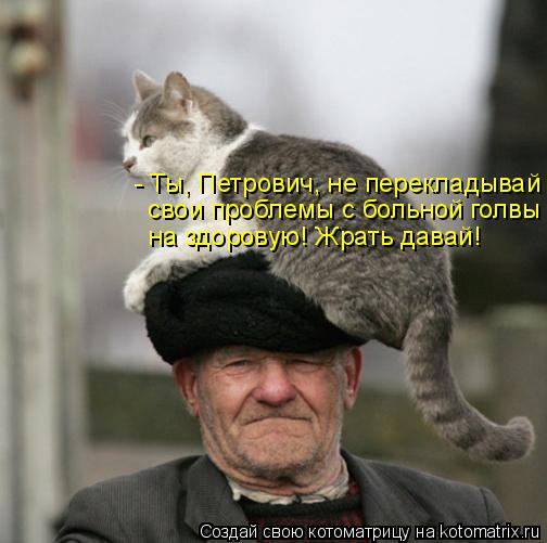 Котоматрица: - Ты, Петрович, не перекладывай свои проблемы с больной голвы на здоровую! Жрать давай!