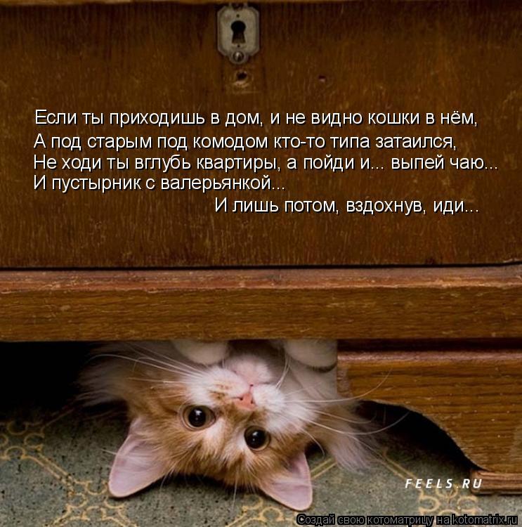 Котоматрица: Если ты приходишь в дом, и не видно кошки в нём, А под старым под комодом кто-то типа затаился, Не ходи ты вглубь квартиры, а пойди и... выпей ча