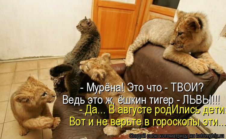 Котоматриця!)))) - Страница 7 948697
