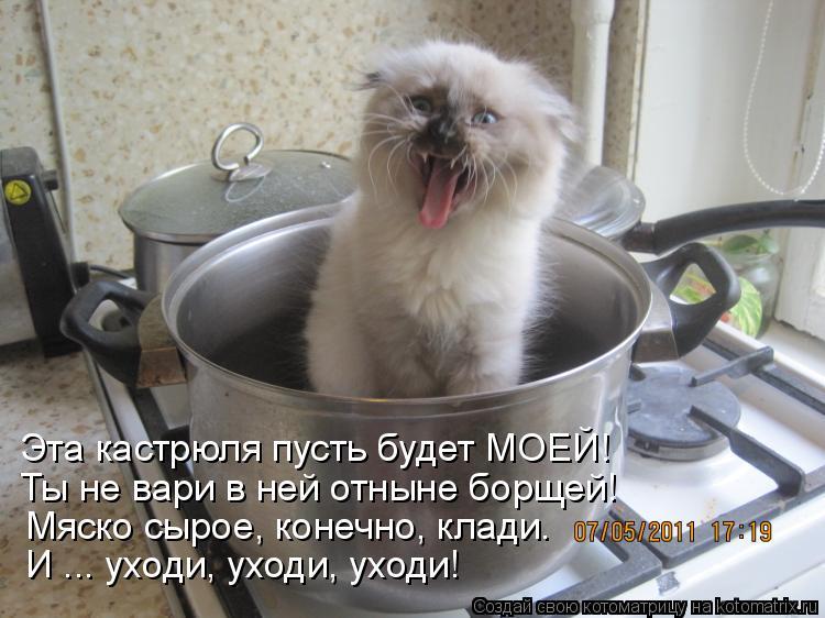 Котоматриця!)))) - Страница 7 949275