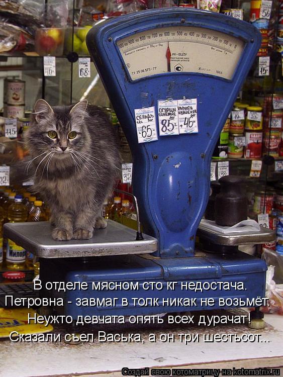 Котоматрица: В отделе мясном сто кг недостача. Петровна - завмаг в толк никак не возьмёт. Неужто девчата опять всех дурачат! Сказали съел Васька, а он три