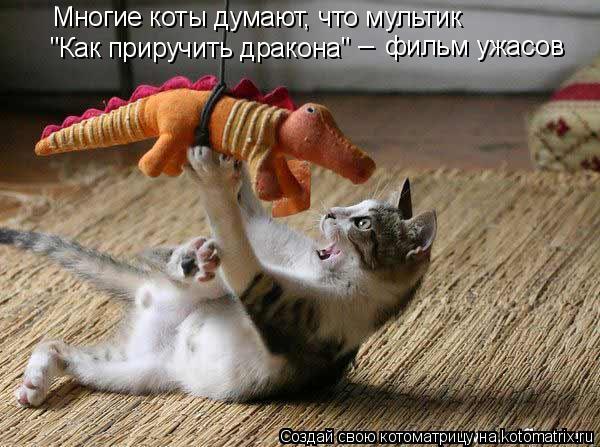 """Котоматрица: Многие коты думают, что мультик  """"Как приручить дракона"""" фильм ужасов _"""