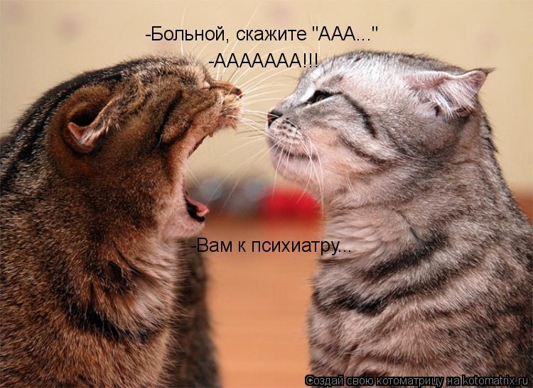 """Котоматрица: -ААААААА!!! -Вам к психиатру... -Больной, скажите """"ААА..."""""""