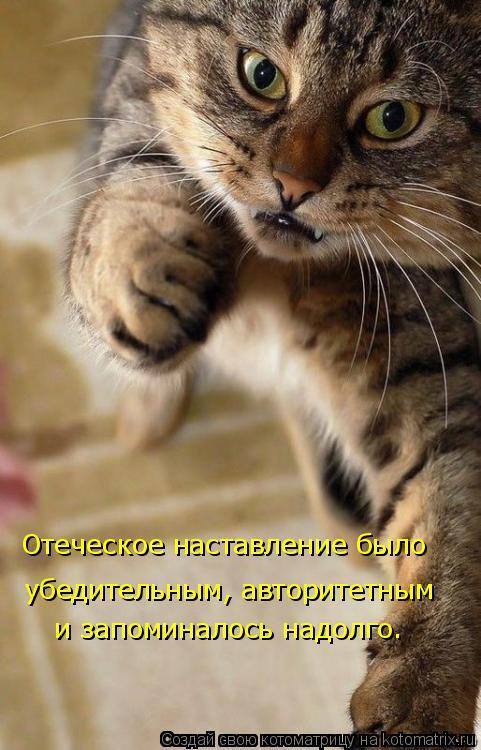 Котоматрица - Отеческое наставление было  убедительным, авторитетным и запоминалось