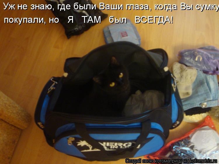 Котоматрица - Уж не знаю, где были Ваши глаза, когда Вы сумку покупали, но   Я   ТАМ