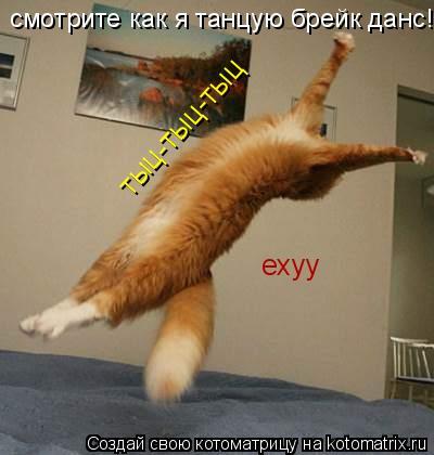 Котоматрица: смотрите как я танцую брейк данс! тыц-тыц-тыц ехуу
