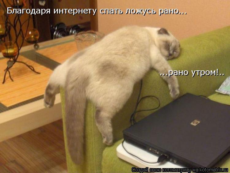 Котоматрица: Благодаря интернету спать ложусь рано ... ...рано утром!..