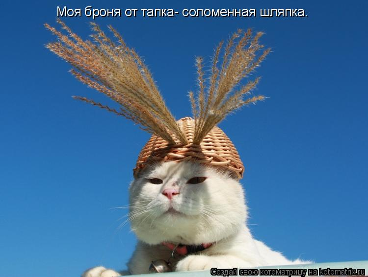 Котоматрица: Моя броня от тапка- соломенная шляпка.
