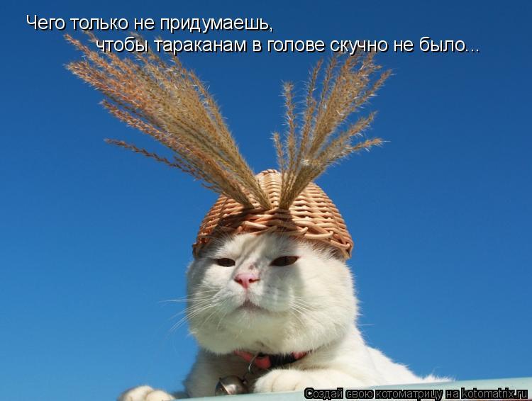 http://kotomatrix.ru/images/lolz/2011/07/17/952517.jpg