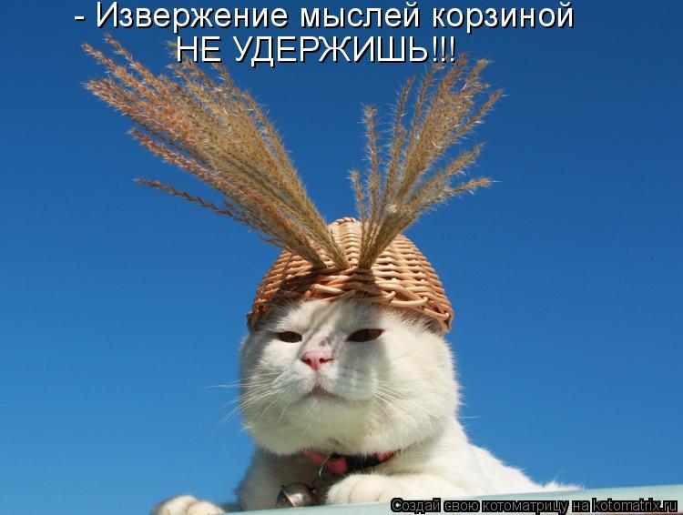 Котоматрица - - Извержение мыслей корзиной НЕ УДЕРЖИШЬ!!!