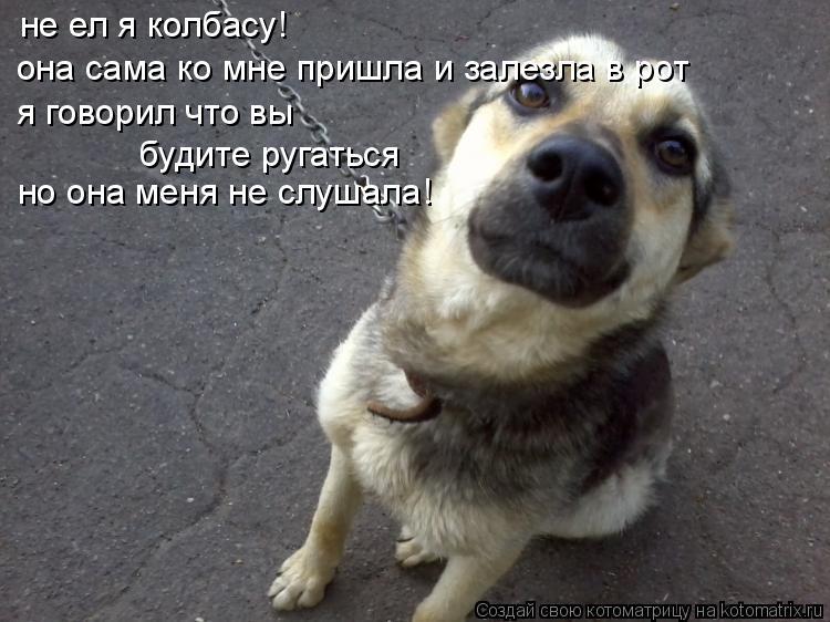 http://kotomatrix.ru/images/lolz/2011/07/18/952610.jpg