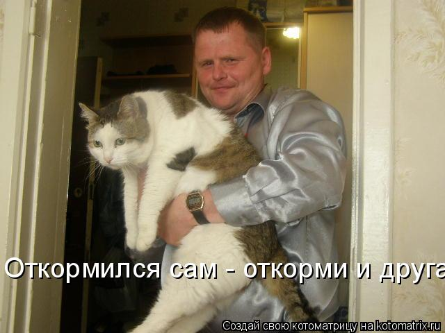 Котоматрица - Откормился сам - откорми и друга!