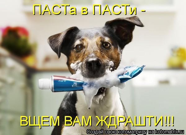 Котоматрица - ПАСТа в ПАСТи - ВЩЕМ ВАМ ЖДРАШТИ!!!