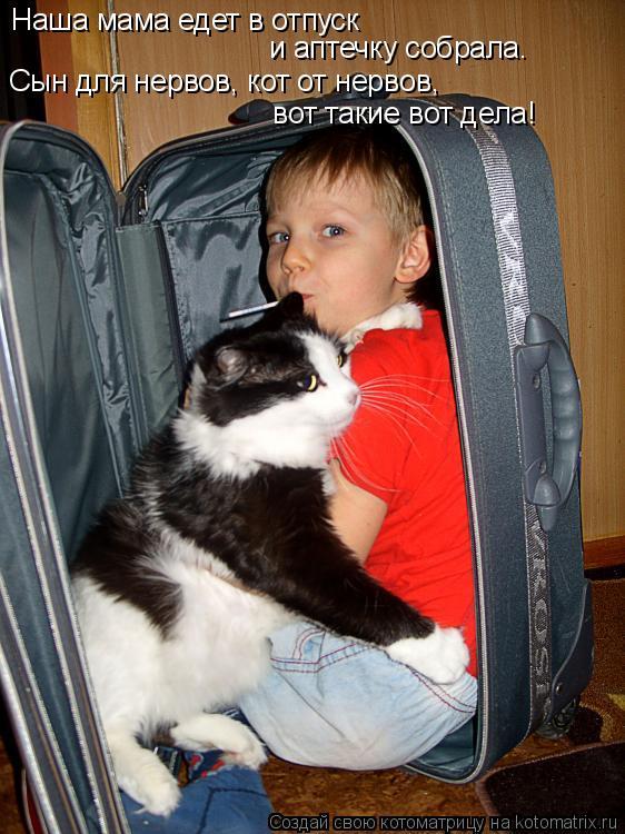 Котоматрица - Наша мама едет в отпуск  и аптечку собрала.  Сын для нервов, кот от не