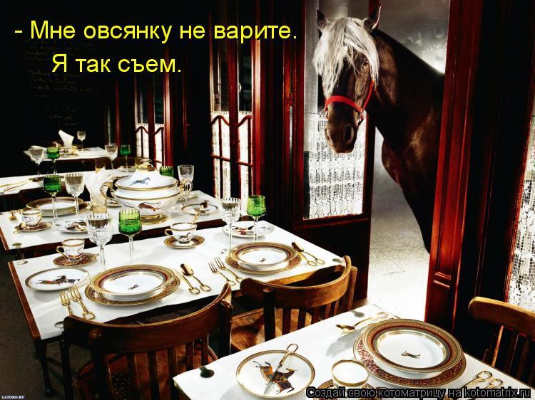 Котоматрица - - Мне овсянку не варите.  Я так съем.