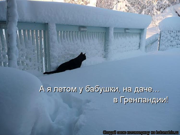 Котоматриця!)))) - Страница 7 954018