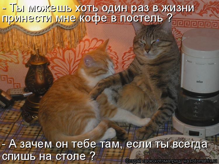 Котоматрица: - Ты можешь хоть один раз в жизни принести мне кофе в постель ? - А зачем он тебе там, если ты всегда спишь на столе ?