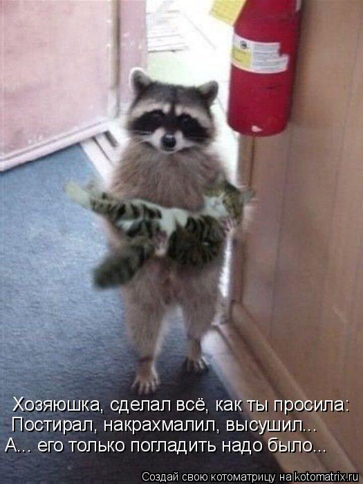 http://kotomatrix.ru/images/lolz/2011/07/21/954686.jpg