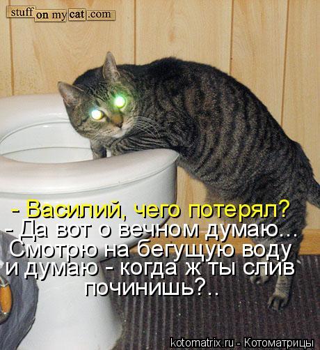 Котоматрица - - Василий, чего потерял? - Да вот о вечном думаю... Смотрю на бегущую