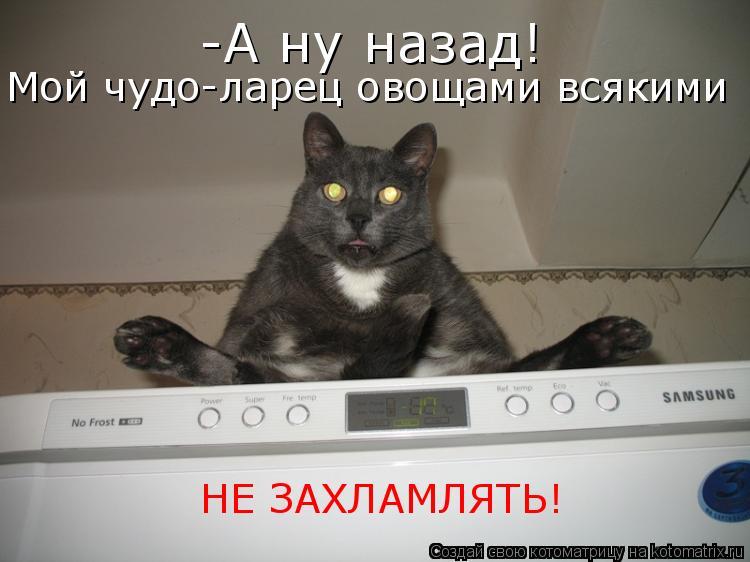 Котоматриця!)))) - Страница 7 955328