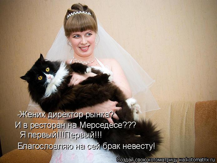 Котоматрица: -Жених директор рынка? И в ресторан на Мерседесе??? Я первый!!!Первый!!! Благословляю на сей брак невесту!