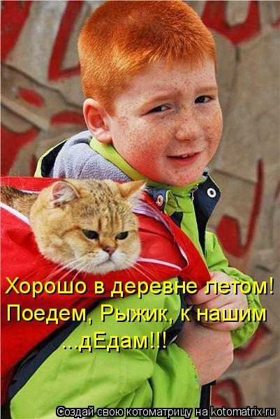 Котоматриця!)))) - Страница 7 955645
