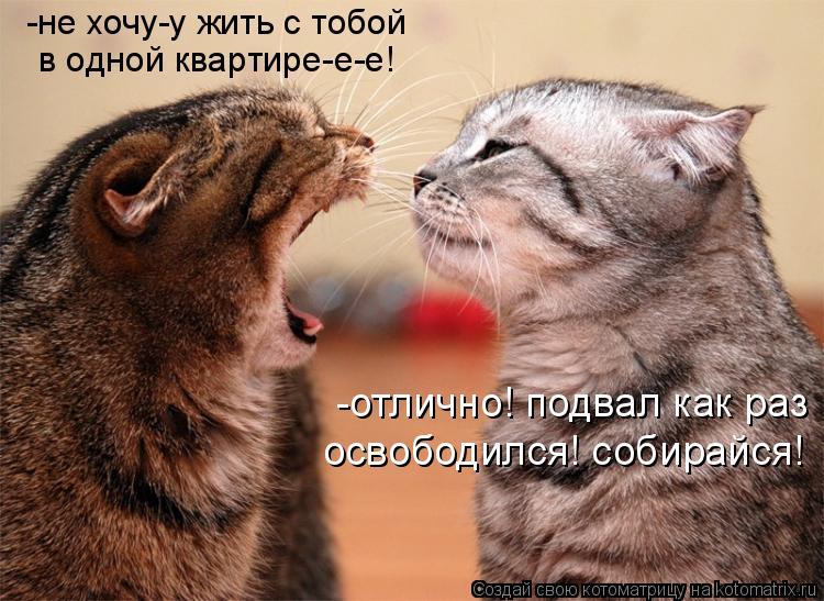 http://kotomatrix.ru/images/lolz/2011/07/22/955655.jpg