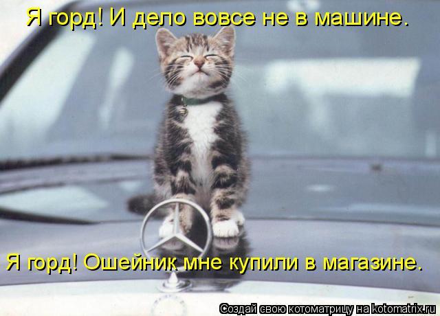 Котоматрица: Я горд! И дело вовсе не в машине.  Я горд! Ошейник мне купили в магазине.
