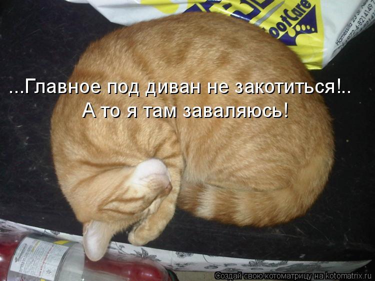 Котоматрица: ...Главное под диван не закотиться!.. А то я там заваляюсь!