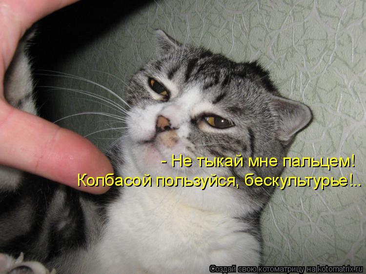 Котоматрица: - Не тыкай мне пальцем! Колбасой пользуйся, бескультурье!..