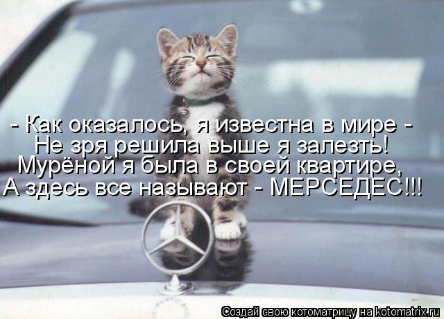 http://kotomatrix.ru/images/lolz/2011/07/24/956945.jpg