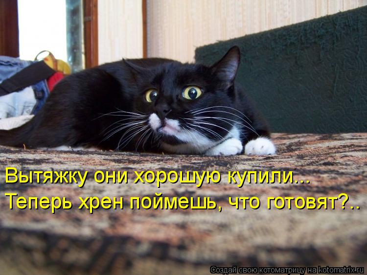 Котоматриця!)))) - Страница 8 957341
