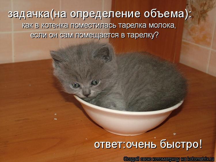 Котоматрица: как в котенка поместилась тарелка молока, если он сам помещается в тарелку? задачка(на определение объема): ответ:очень быстро!