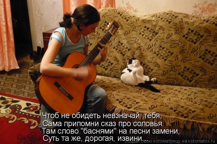 """Котоматрица: Чтоб не обидеть невзначай  тебя,  Сама припомни сказ про соловья. Суть та же, дорогая, извини... Там слово """"баснями"""" на песни замени,"""