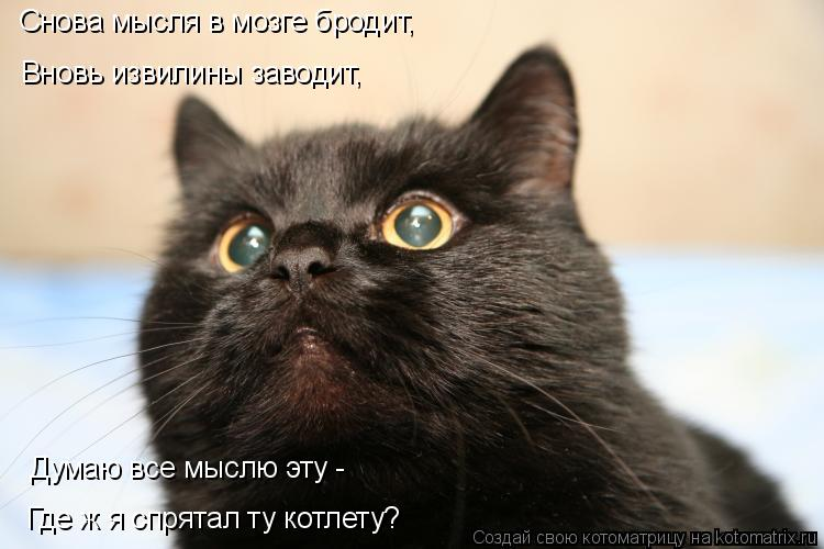 http://kotomatrix.ru/images/lolz/2011/07/28/958891.jpg