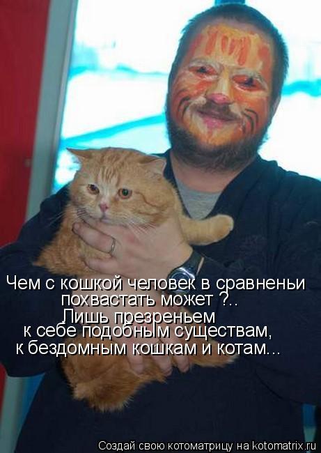 Котоматрица: Чем с кошкой человек в сравненьи похвастать может ?.. Лишь презреньем  к себе подобным существам, к бездомным кошкам и котам...
