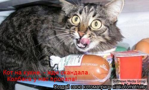 Котоматрица: Кот на кухне, - жди скандала. Колбаса у нас пропала!