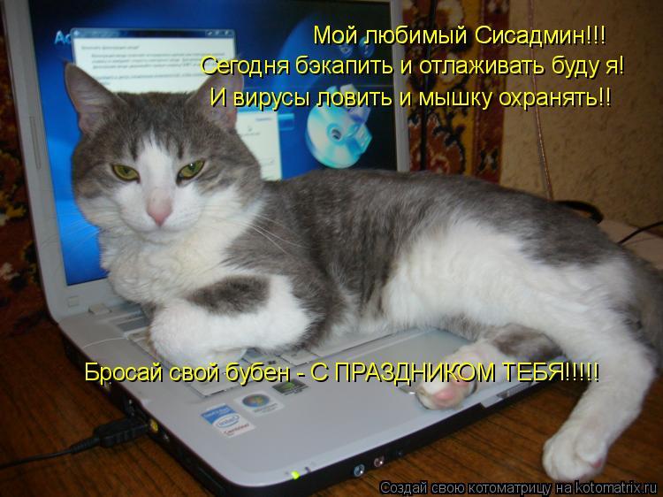 Котоматрица: Мой любимый Сисадмин!!! Мой любимый Сисадмин!!! Сегодня бэкапить и отлаживать буду я! И вирусы ловить и мышку охранять!! Бросай свой бубен - С П