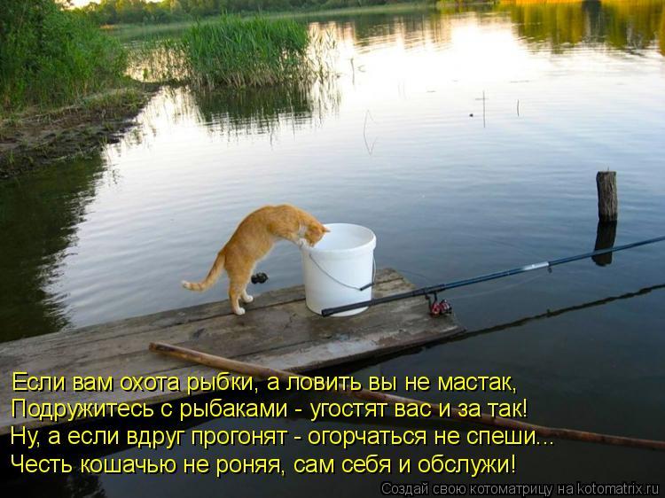 ловить рыбу утром и в