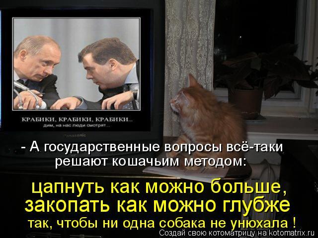 Котоматрица: решают кошачьим методом: - А государственные вопросы всё-таки  цапнуть как можно больше,  закопать как можно глубже так, чтобы ни одна собака