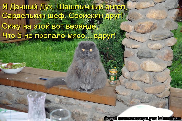 http://kotomatrix.ru/images/lolz/2011/07/30/960280.jpg