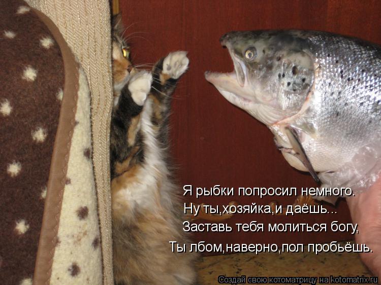 Смотреть проно госпожа заставила лизать бесплатно русское 18 фотография