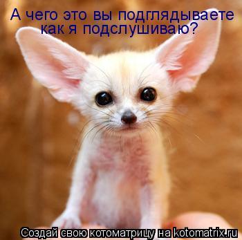 http://kotomatrix.ru/images/lolz/2011/08/01/961285.jpg