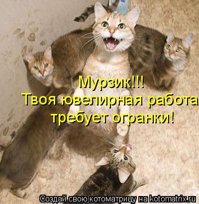 Котоматрица: Твоя ювелирная работа  требует огранки! Мурзик!!!