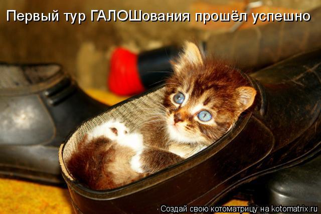 http://kotomatrix.ru/images/lolz/2011/08/02/961739.jpg