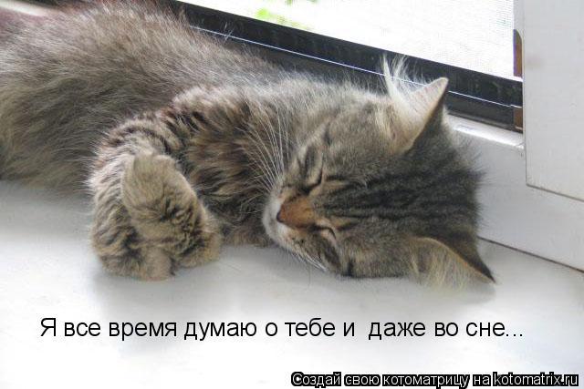 Думаю во сне