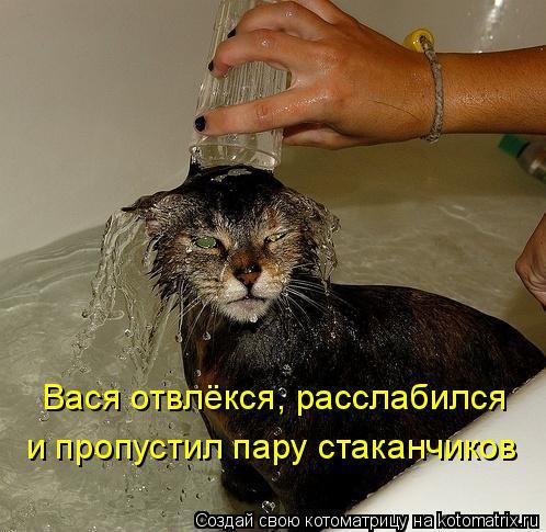 Котоматрица: Вася отвлёкся, расслабился и пропустил пару стаканчиков