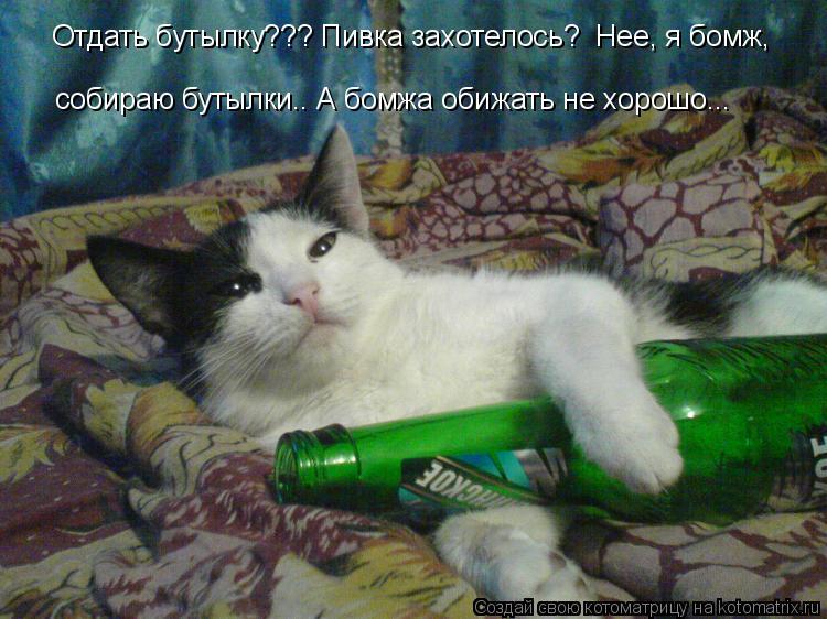 Котоматрица: Отдать бутылку??? Пивка захотелось?  Нее, я бомж,  собираю бутылки.. А бомжа обижать не хорошо...