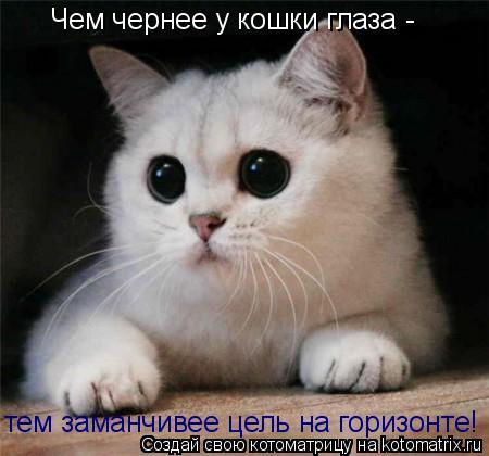 http://kotomatrix.ru/images/lolz/2011/08/03/962690.jpg